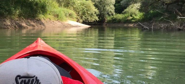 Berufskraftfahrer*innen paddeln auf dem Rhein